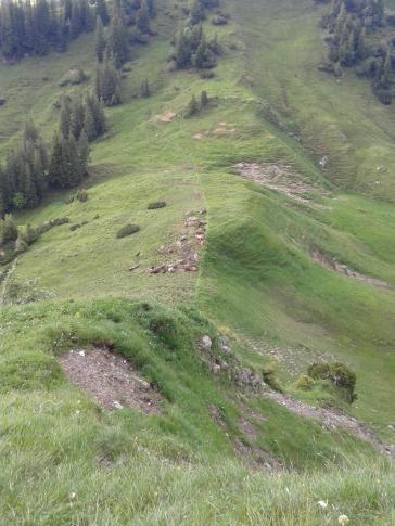 Alp Hintermatt (227)