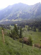 Alp Hintermatt (229)