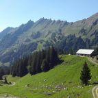 Alp Hintermatt