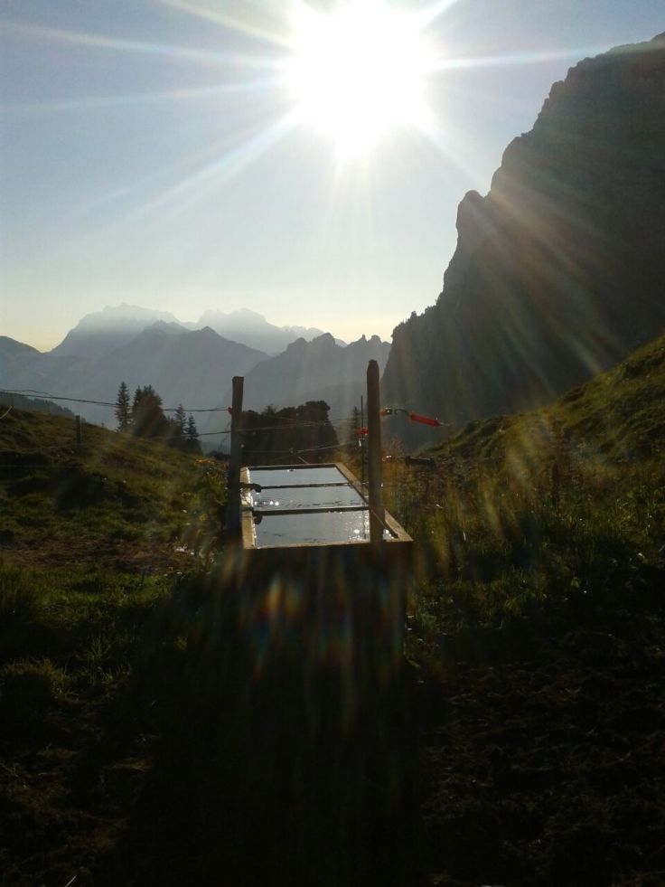 Sonnenaufgang Matthöhe