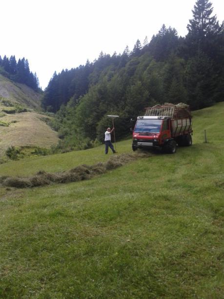 Streui Sulzbach 2015 (12)