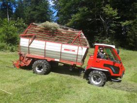 Streui Sulzbach 2015 (25)
