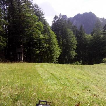 Streui Sulzbach 2015 (3)