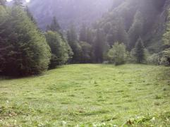 Streui Sulzbach 2015 (8)