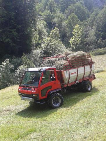 Streui Sulzbach 2015 (9)