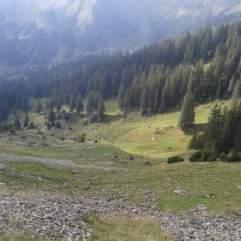 Die letzten Tage auf der Alp 2015 (17)