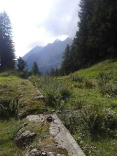 Die letzten Tage auf der Alp 2015 (2)