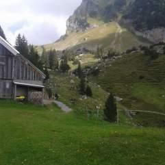 Die letzten Tage auf der Alp 2015 (33)