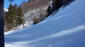 Hintermatt Winter 2016 (5)