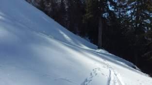 Hintermatt Winter 2016 (6)