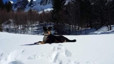 Hintermatt Winter 2016 (9)