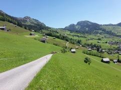 Alpauffahrt_2016_004