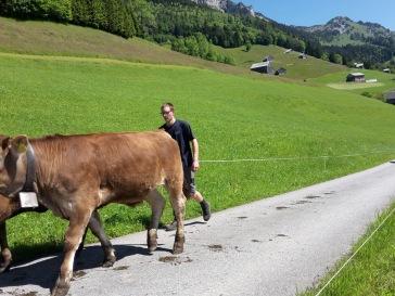 Alpauffahrt_2016_022