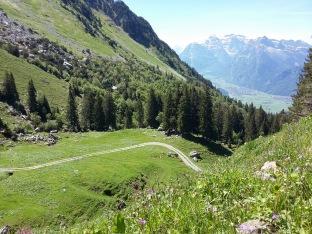 Alpauffahrt_2016_030