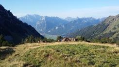 alpabfahrt-2016-12